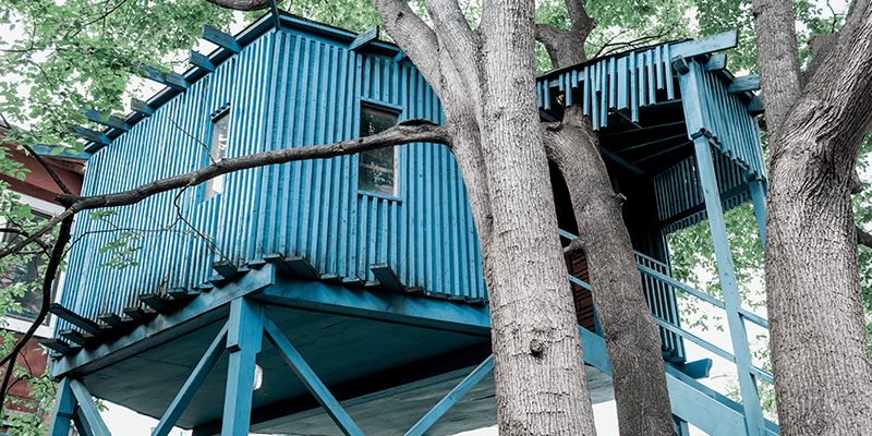 Iconice blue wooden tree house at the Berkeley Field House